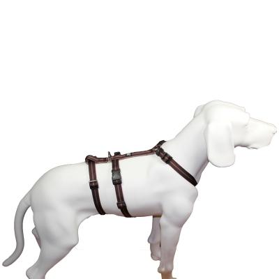 Feltmann Hundegeschirr NoExit® - Streifen