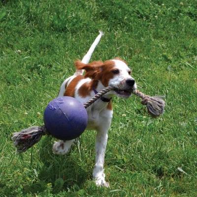 Jolly Ball Romp-n-Roll HUndeball