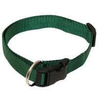 Hundehalsband Grün uni