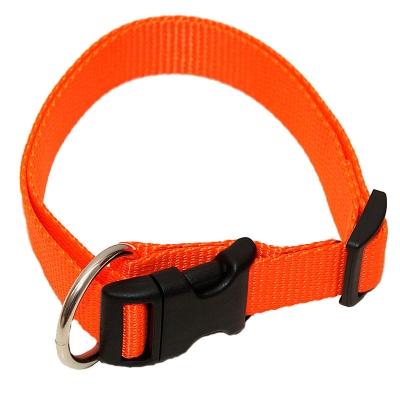 Hundehalsband in Uni Farben - Halsband von Brustgeschirr.com
